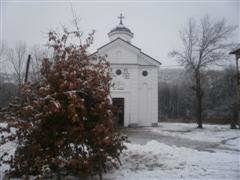 bozic2012